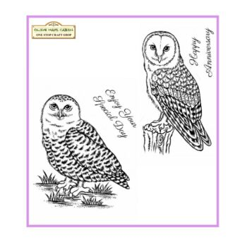 Snowy Owl and Barn Owl Clear Stamp Set